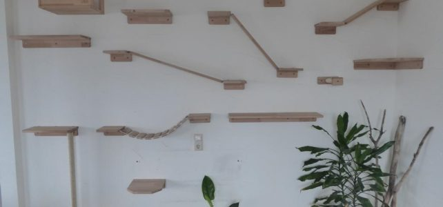 Kletterwand Module für Katzen